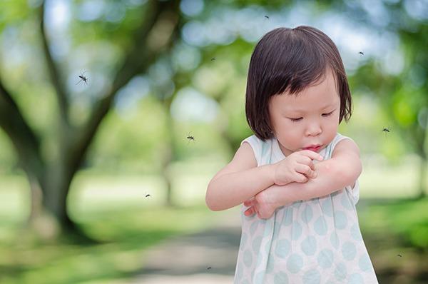Marietta mosquito control